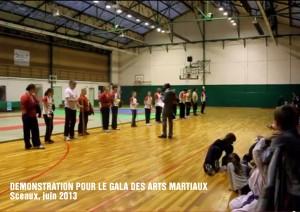 Démonstration de canne de combat pour le Gala des Arts Martiaux de Sceaux.