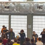 Titis parisiens 2019 canne de combat paris apaches de paname